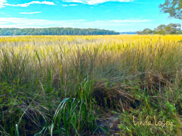 Savannah Grasses 120 Jigsaw Puzzle