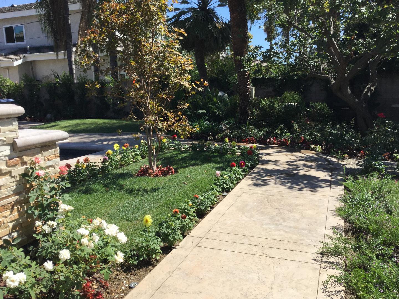 Path walk with beautiful flowers