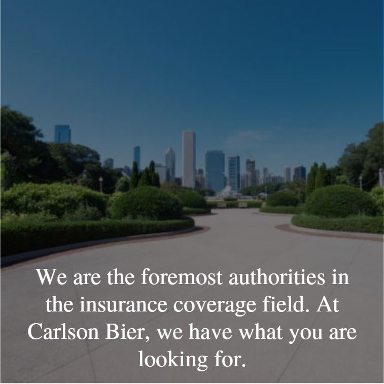 Our Illinois Insurance Coverage Attorneys have set legal precedents with their cases