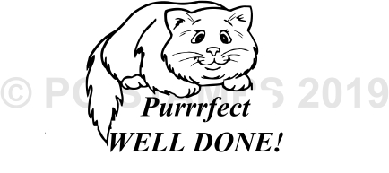 CIRCULAR 18 - Purrfect Well Done stamp