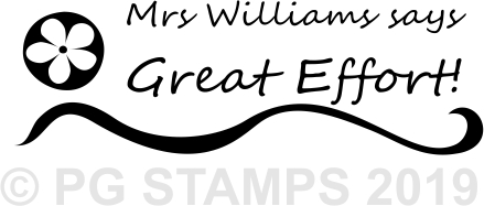 NT 10 - Customised Great Effort teacher stamp