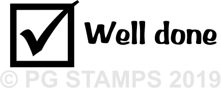 NT 2 - Well Done teacher stamp