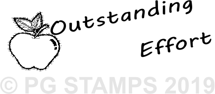NT 8 - Outstanding Effort teacher stamp