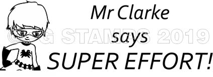 SUPER HERO 3 -Customised motivational teacher stamp