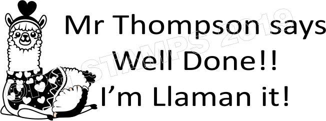 LLAMA 11 - Personalised Motivational Self Inking Teacher Stamp