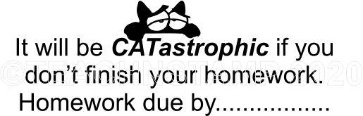 CAT 19 - Homework Due teacher stamp
