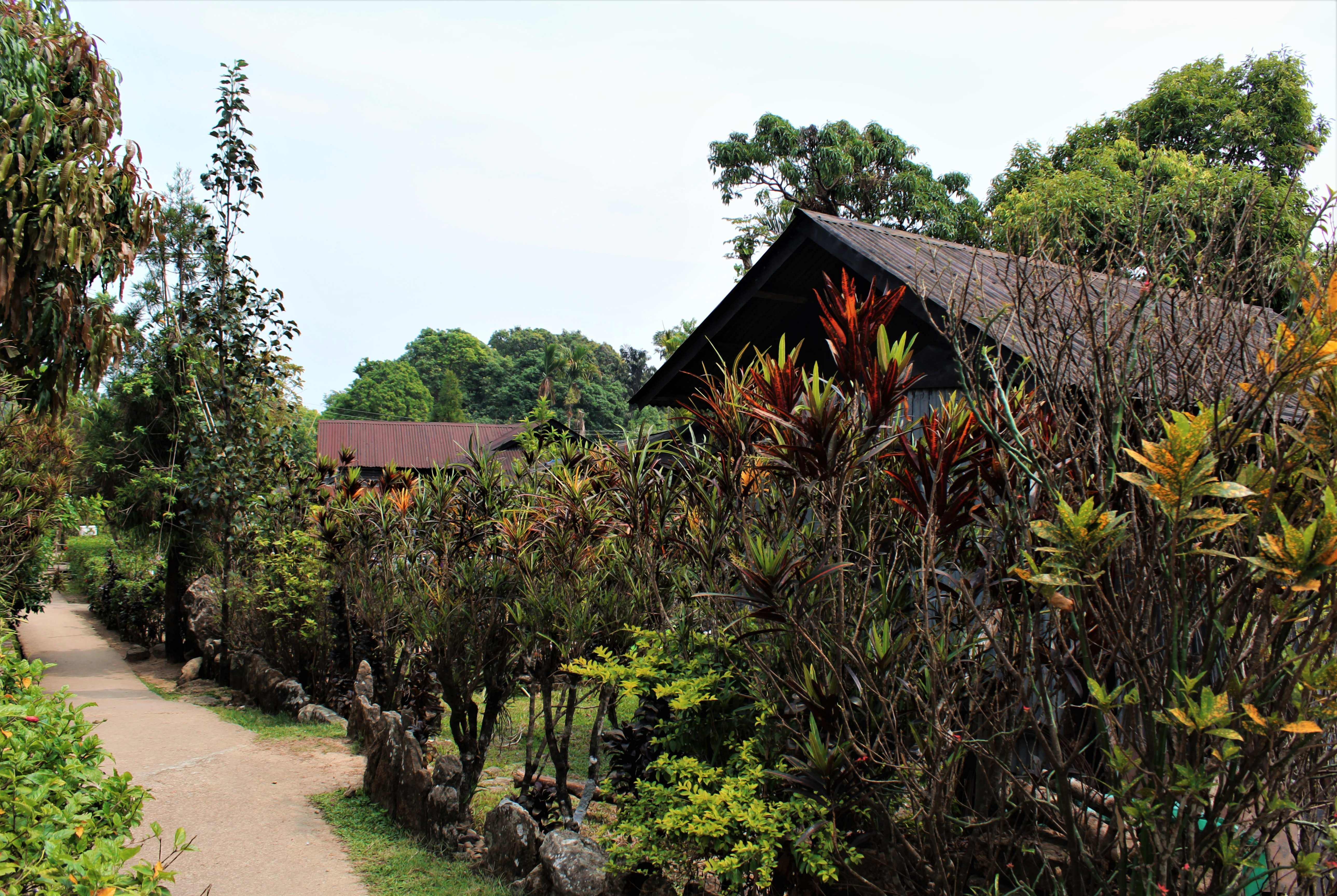 A glimpse of Mawlynnong Village