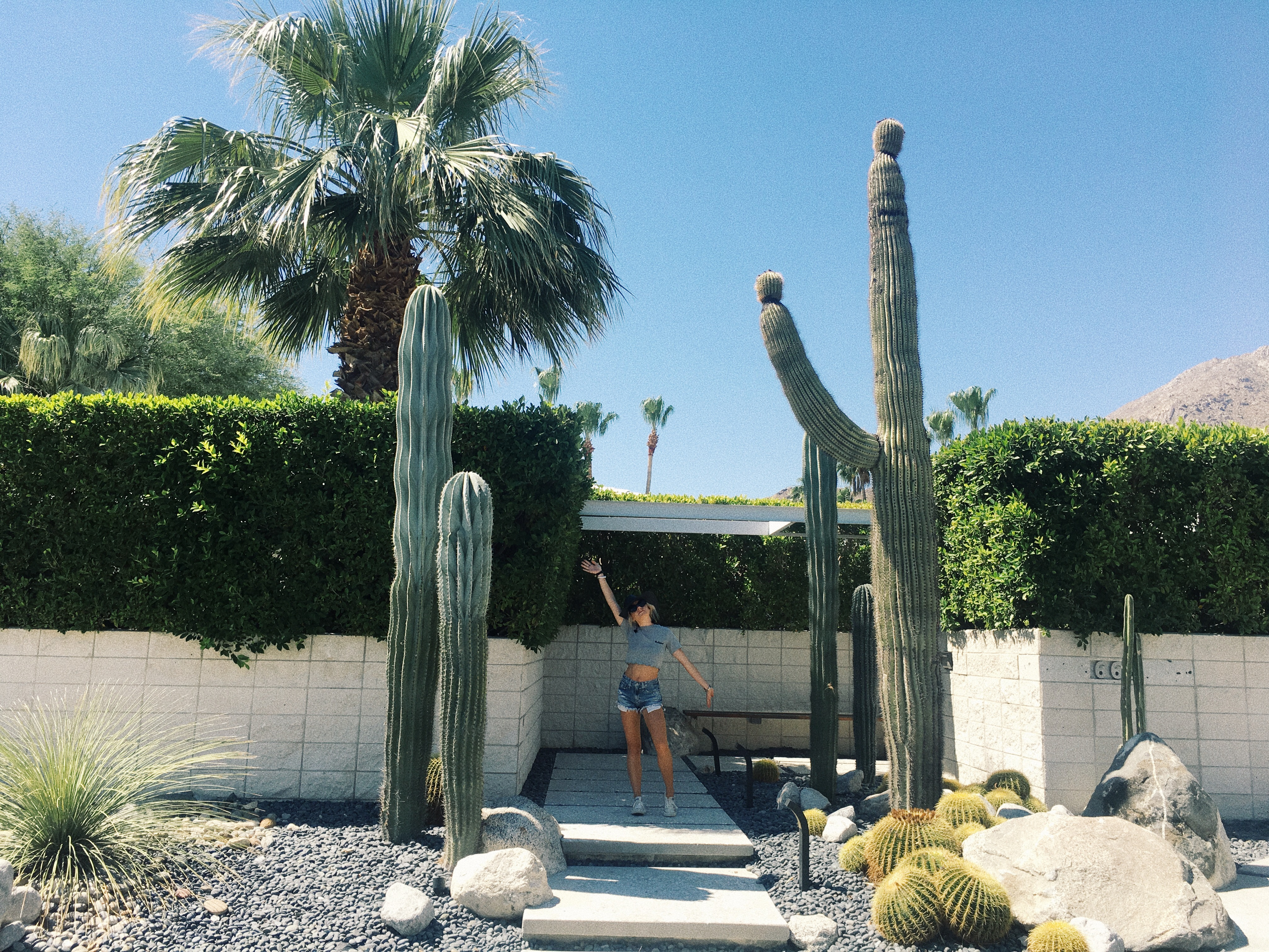 Palm Springs with Homeaway