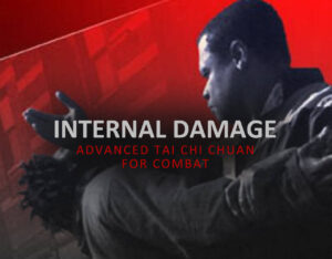 Internal Damage, Martial Tai Chi from Glenn Hairston