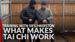 What Makes Tai Chi Work Training Video from Glenn Hairston
