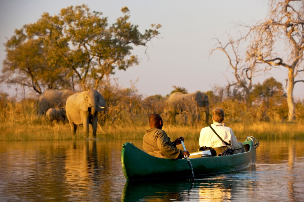 Natural Habitat Adventures is introducing an exclusive new safari adventure aboard a privately chartered deluxe riverboat cruising the Chobe and Zambezi rivers beginning in June 2016.