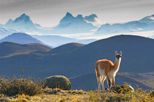 """Patagonia: A Journey of Discovery"" is one of Wildland's first in a series of new Transformational Travel experiences."