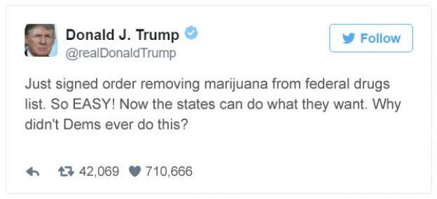 Trump Legalizes Tweet 1