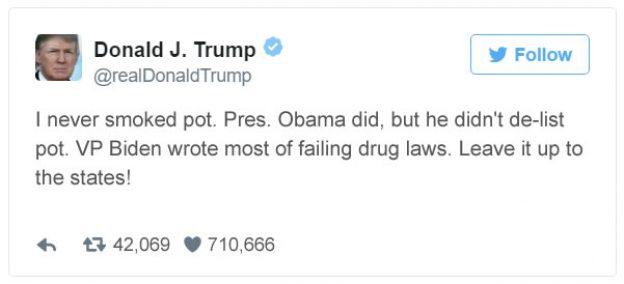 Trump Legalizes Tweet 2