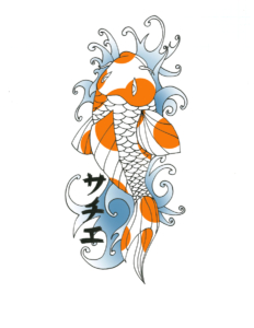 KOi1 color2