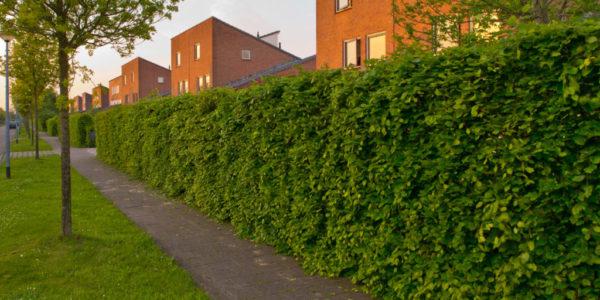 slider3,SidewalkRepairBrooklyn, 4703 Fort Hamilton Pkwy Brooklyn, NY 11219, +1(347) 429-9878