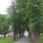 Bannerman Park