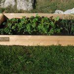 More mature farmers market box (2)