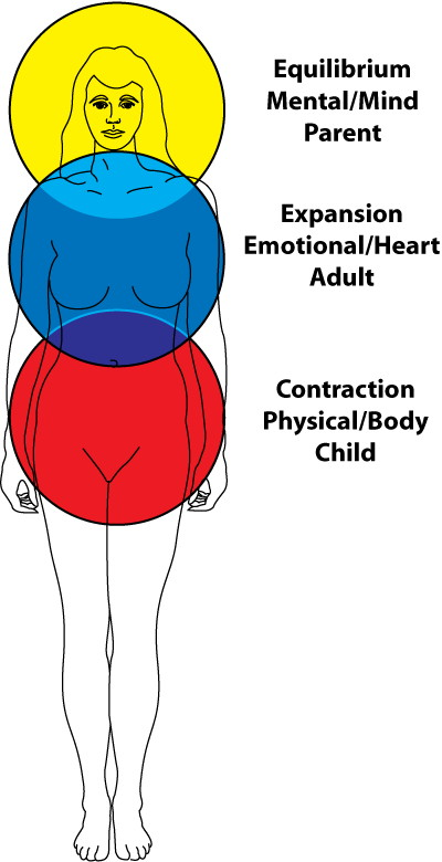 Emotional Anatomy – Overview