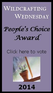 2014 People's Choice Award