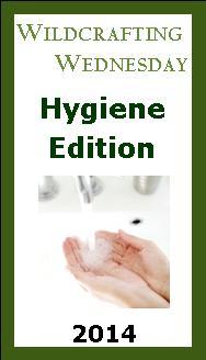 Wildcrafting Wednesday – Hygiene Edition