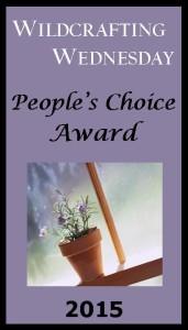 2015 WW People's Choice Award Promo Button