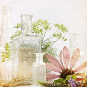 Medicinal-Herbs1