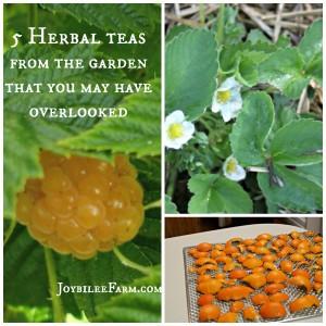 5-herbal-teas