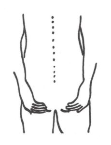 Figure 2 Place both hands on your sit bones. Feel the pulse.