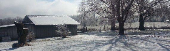 Winter Storm Octavia