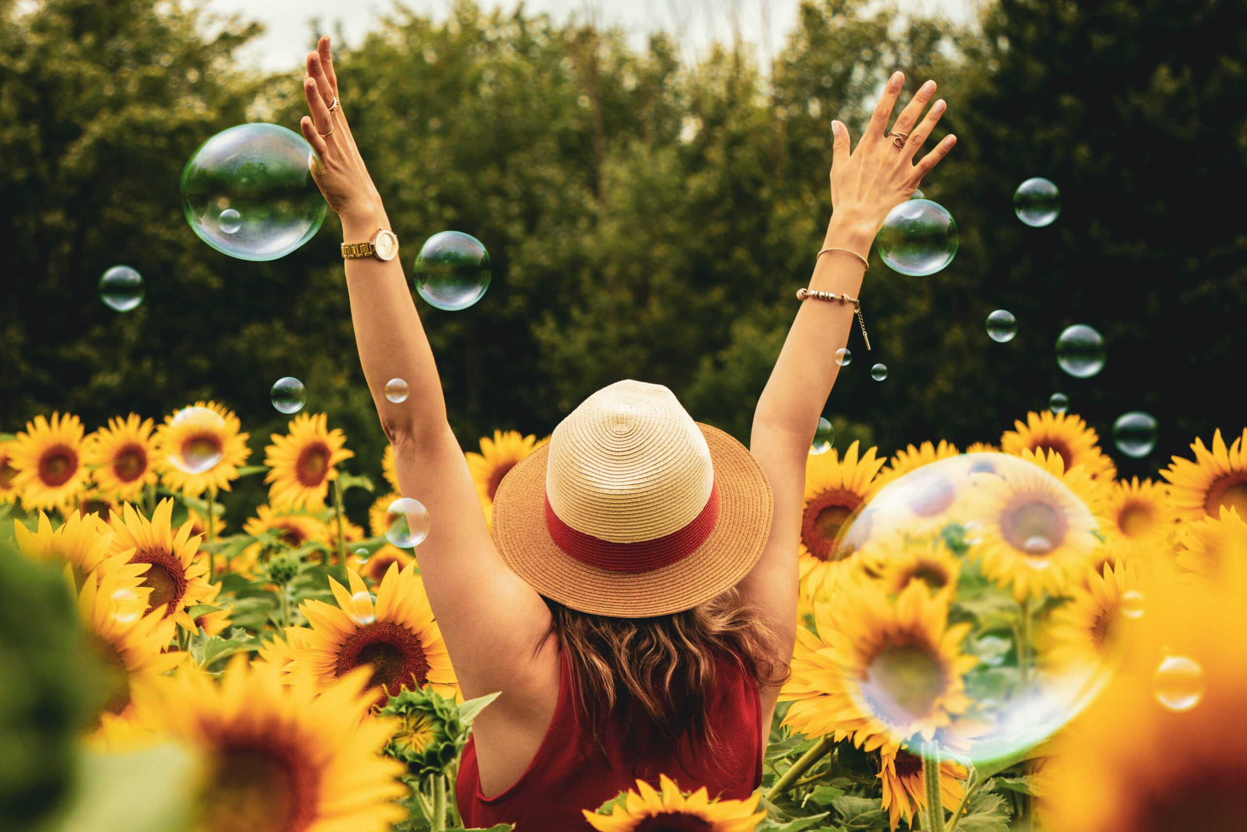woman-surrounded-by-sunflowers