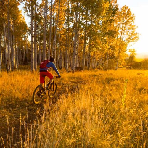 Move more with less pain by using Prolotherapy from Aspen Integrative Medical Center in Flagstaff, Arizona. A mountain biker can get back on the bike sooner with naturopathic care.