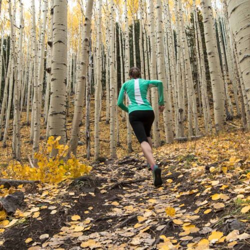 Move more with less pain by using Prolotherapy from Aspen Integrative Medical Center in Flagstaff, Arizona. A trail runner can get back on the trail sooner with naturopathic care.