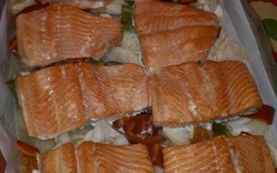 Trucha o Salmon?