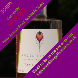 Angel Feathers - Tayberry Gin