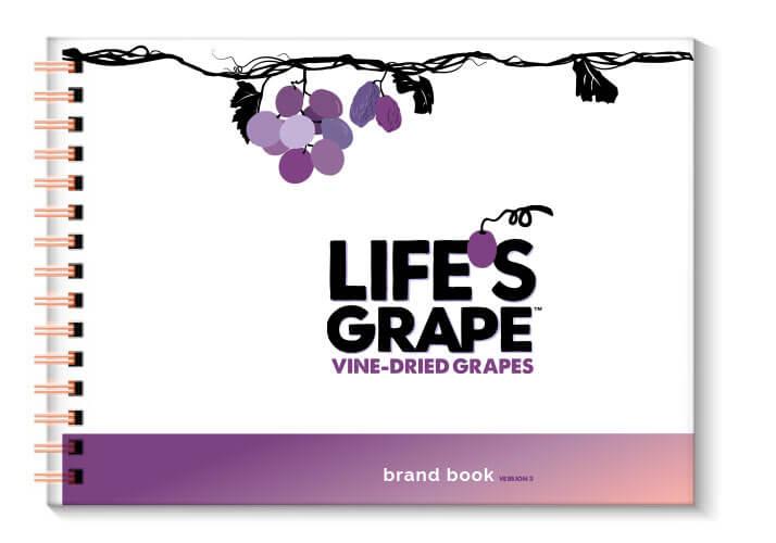 LG_brand-book