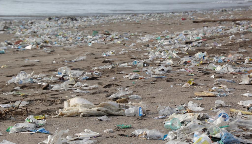 slow fashion's environmental solutions