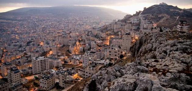 اقتصاد محافظة نابلس : صورة من أحد جبال المحافظة