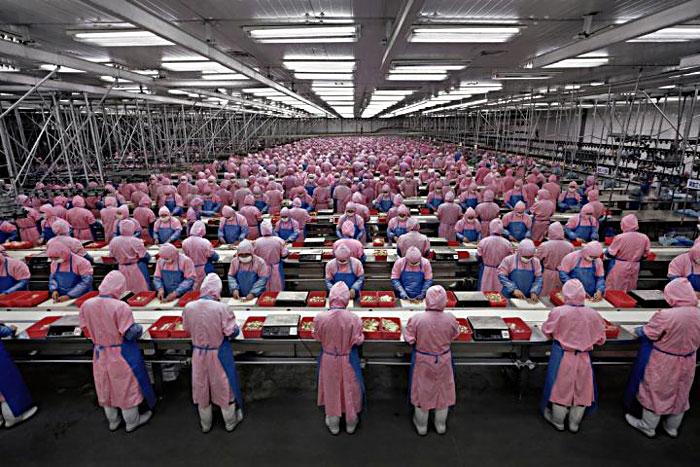 الصين مصنع العالم الكبير : العمالة وتكاليفها المنافسة