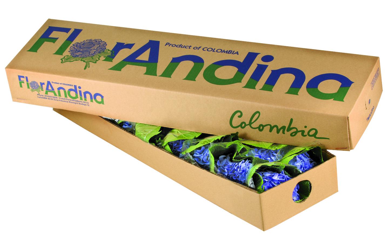 Caja Flores Azules