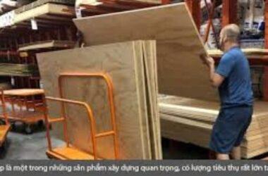 Việt Nam soán ngôi TQ cung cấp ván ép hàng đầu sang Mỹ