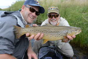 A deep bellied Madison River brown trout.