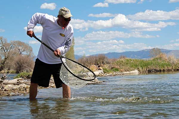 Beaverhead river fishing report