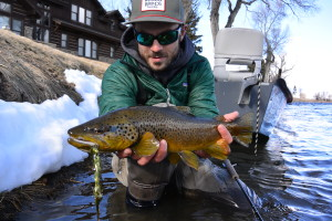 Art shows off a sweet streamer eating Madison River brown!