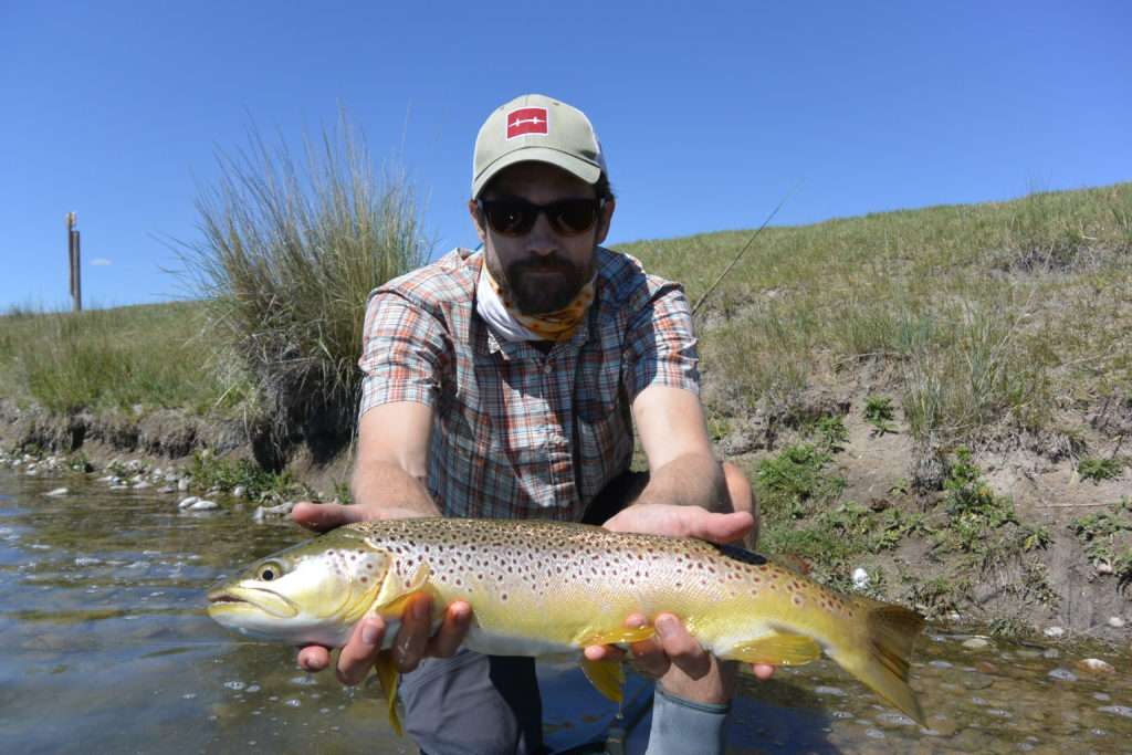 brown-trout-montana-private-water-fishtales-outfitting
