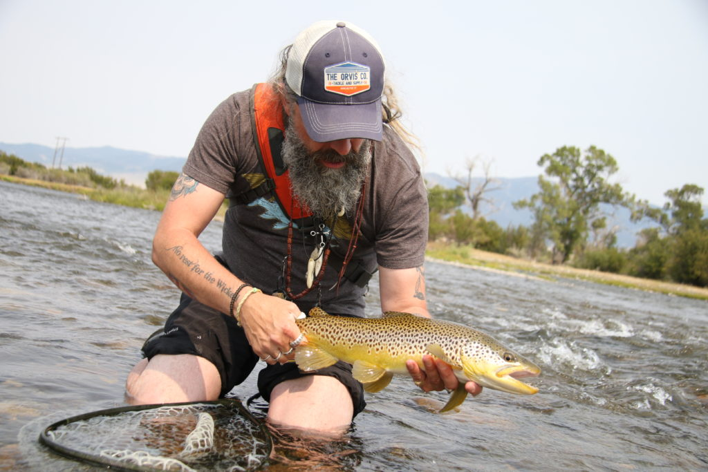 "A fine madison river brown that couldn't say ""No' to the Bunny and beadhead rig!"