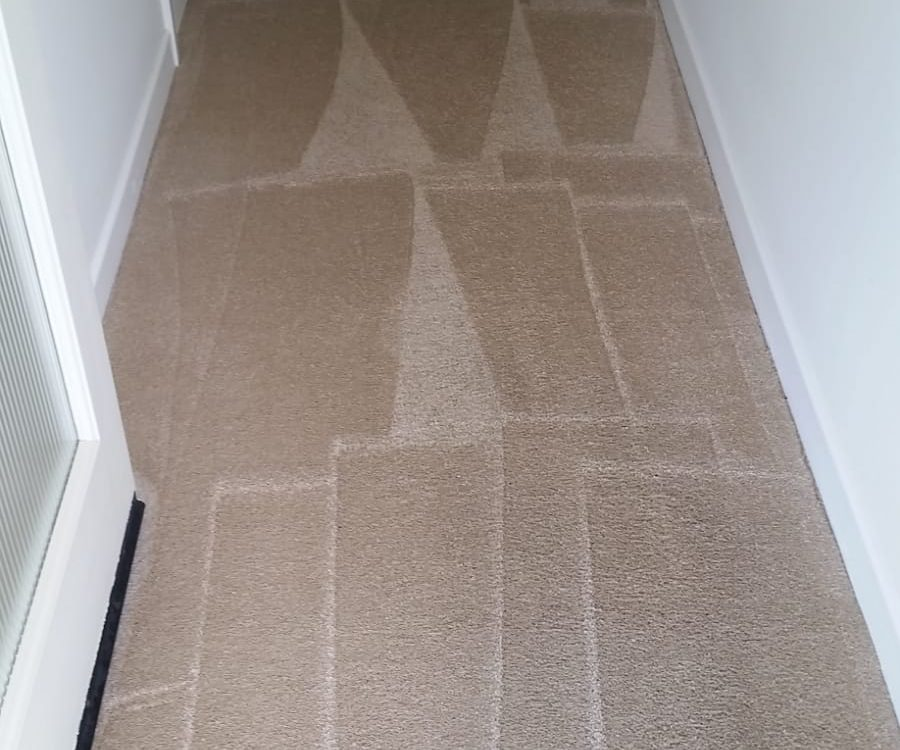 local mission viejo carpet cleaning