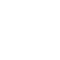 Vitus Tax and Accounting