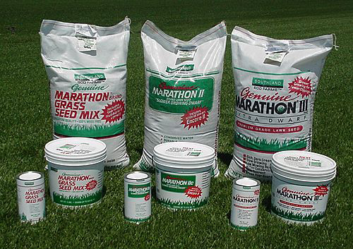 Genuine Marathon Seed
