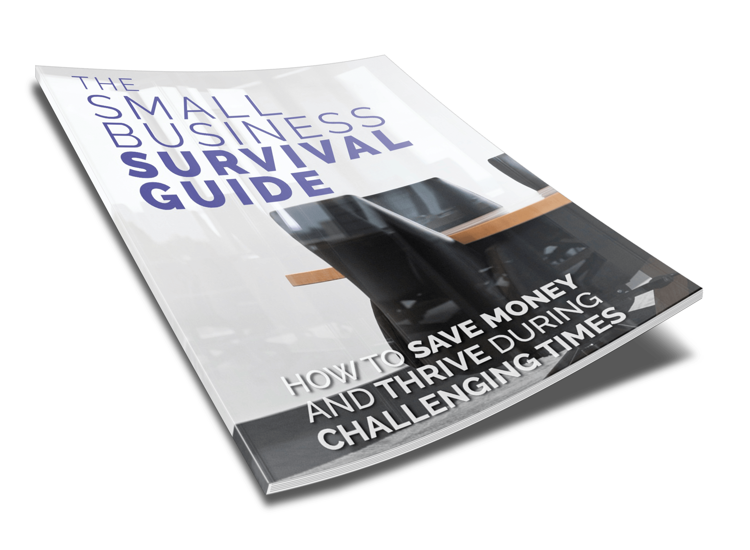 Small Business Survival Guide - 2